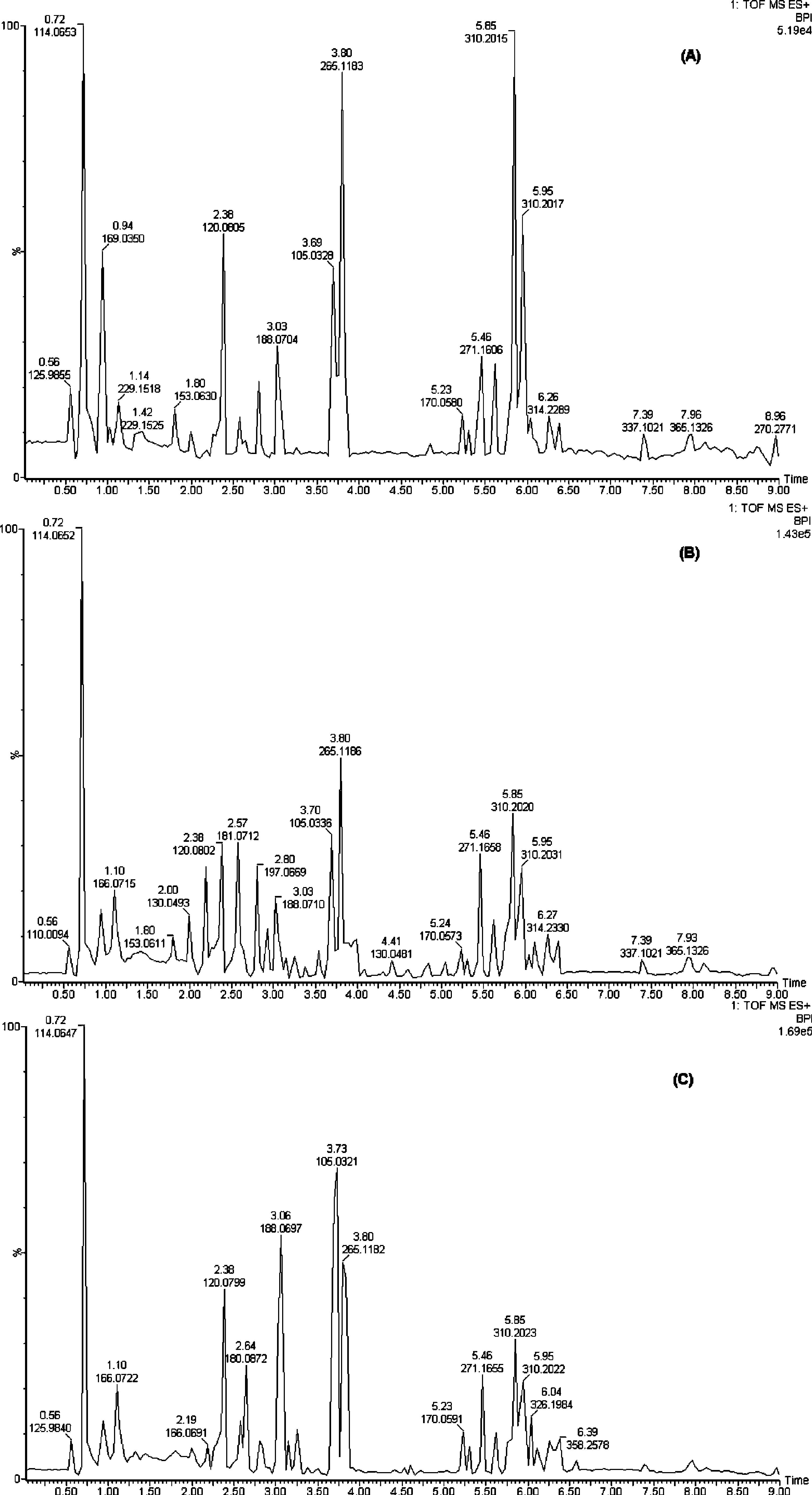代谢组学-脂质-代谢流-靶向定量